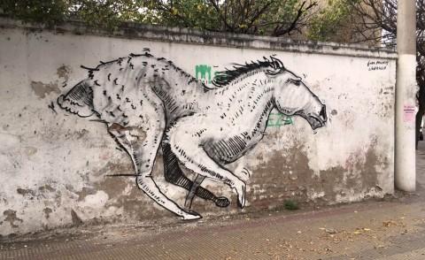 Horsehare