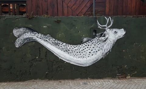 Deersurubi