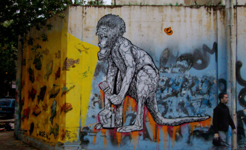 Marsupial Monkey